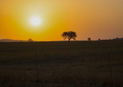 IMG_2096HELLO-AFRICA-1024x683