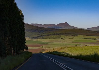 IMG_1093-ROAD-TO-DARGLE-FOREST-1200