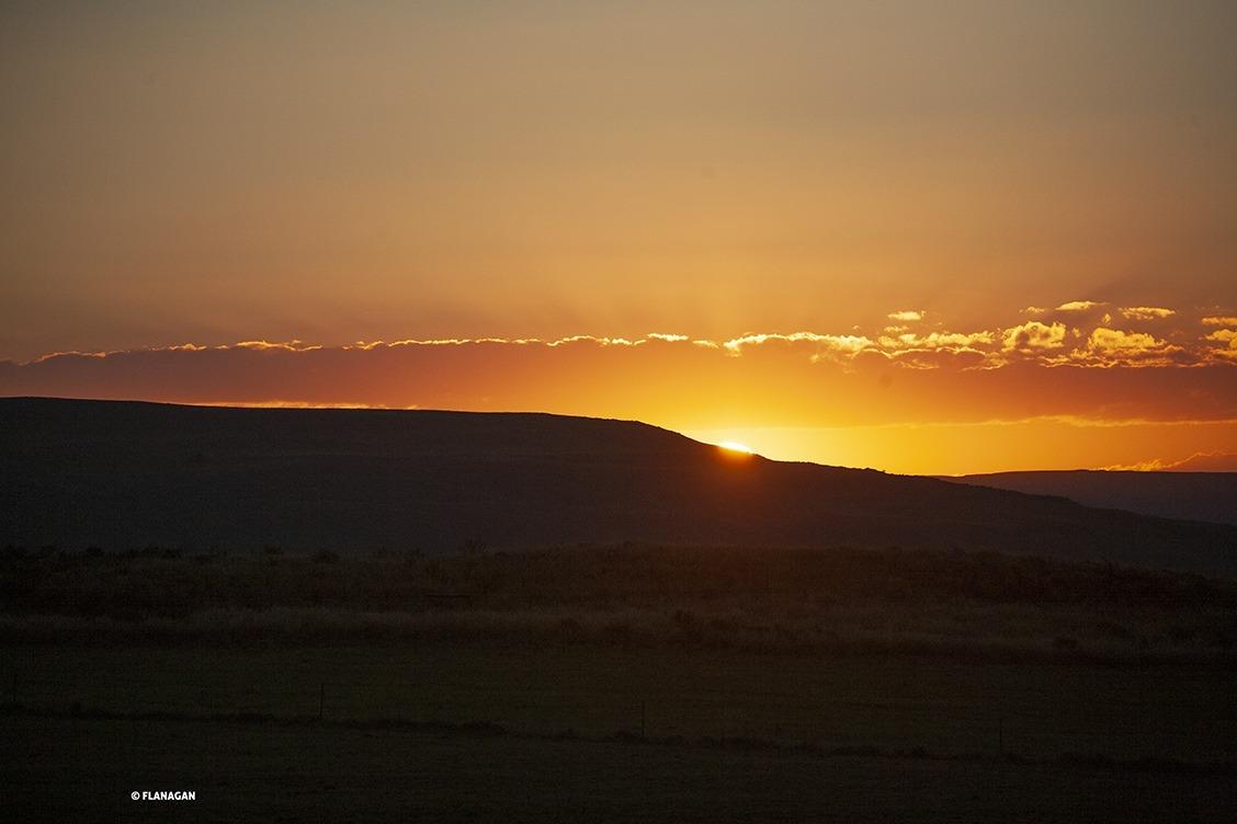 IMG_1716-SUNSET-S