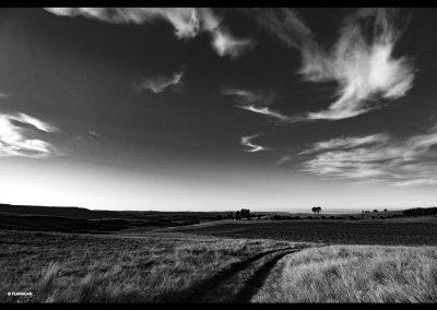 IMG_4867-DARGLE-ROAD